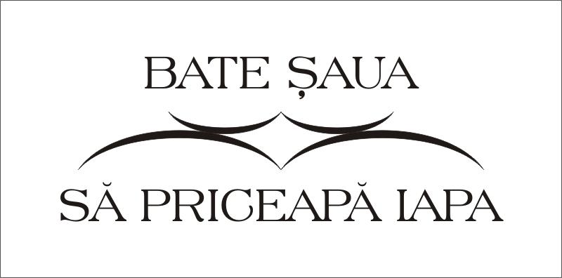 Asociatia BATE ȘAUA SĂ PRICEAPĂ IAPA logo