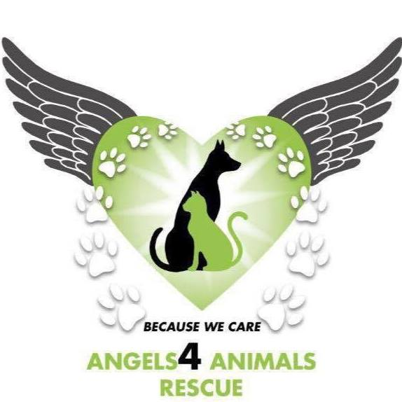 Angels4 Animals Rescue logo