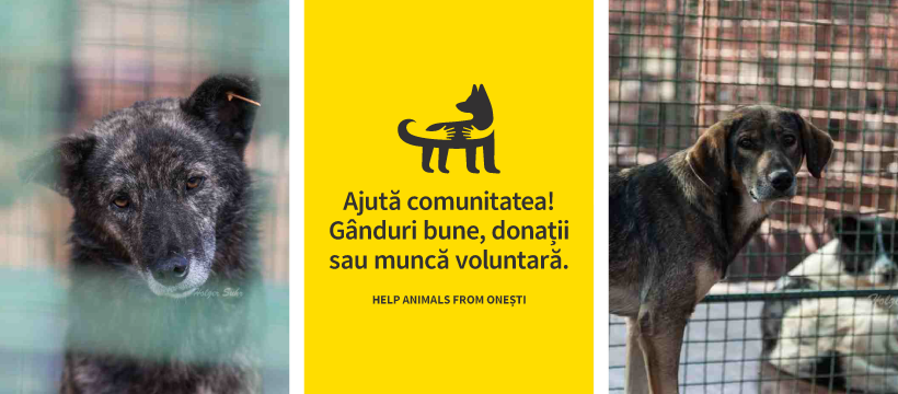 Help Animals From Onesti logo