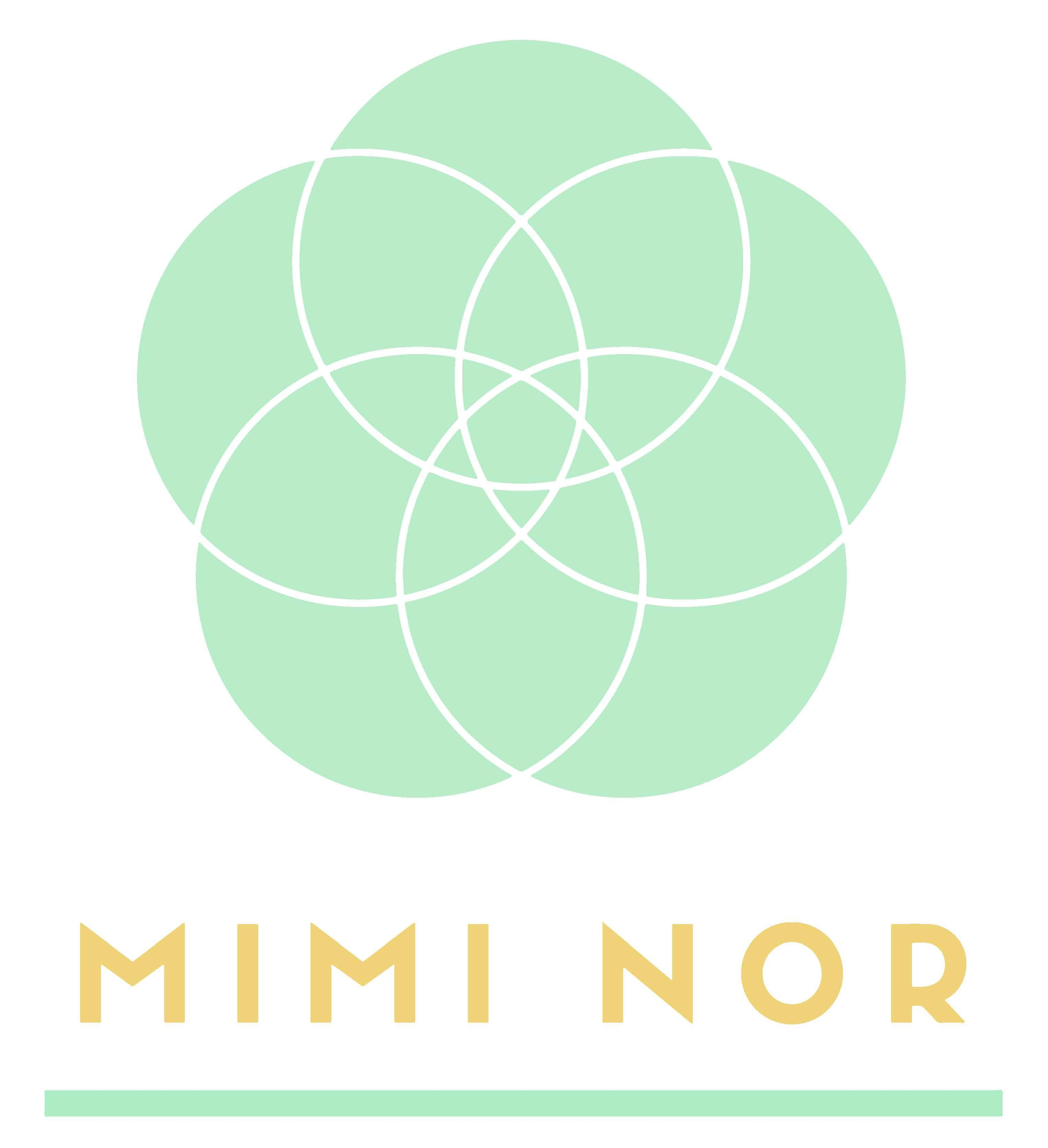 Asociația Mimi Nor logo