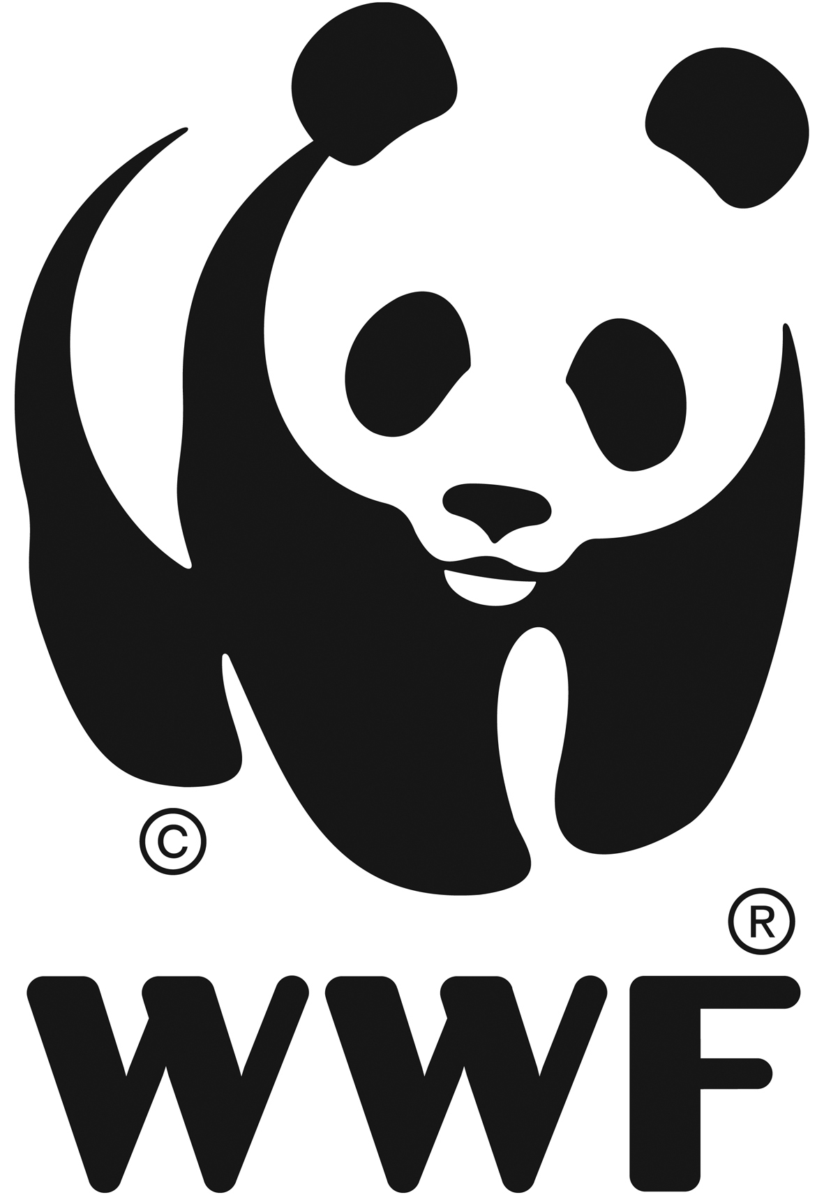Asociatia WWF Programul Dunare Carpati logo