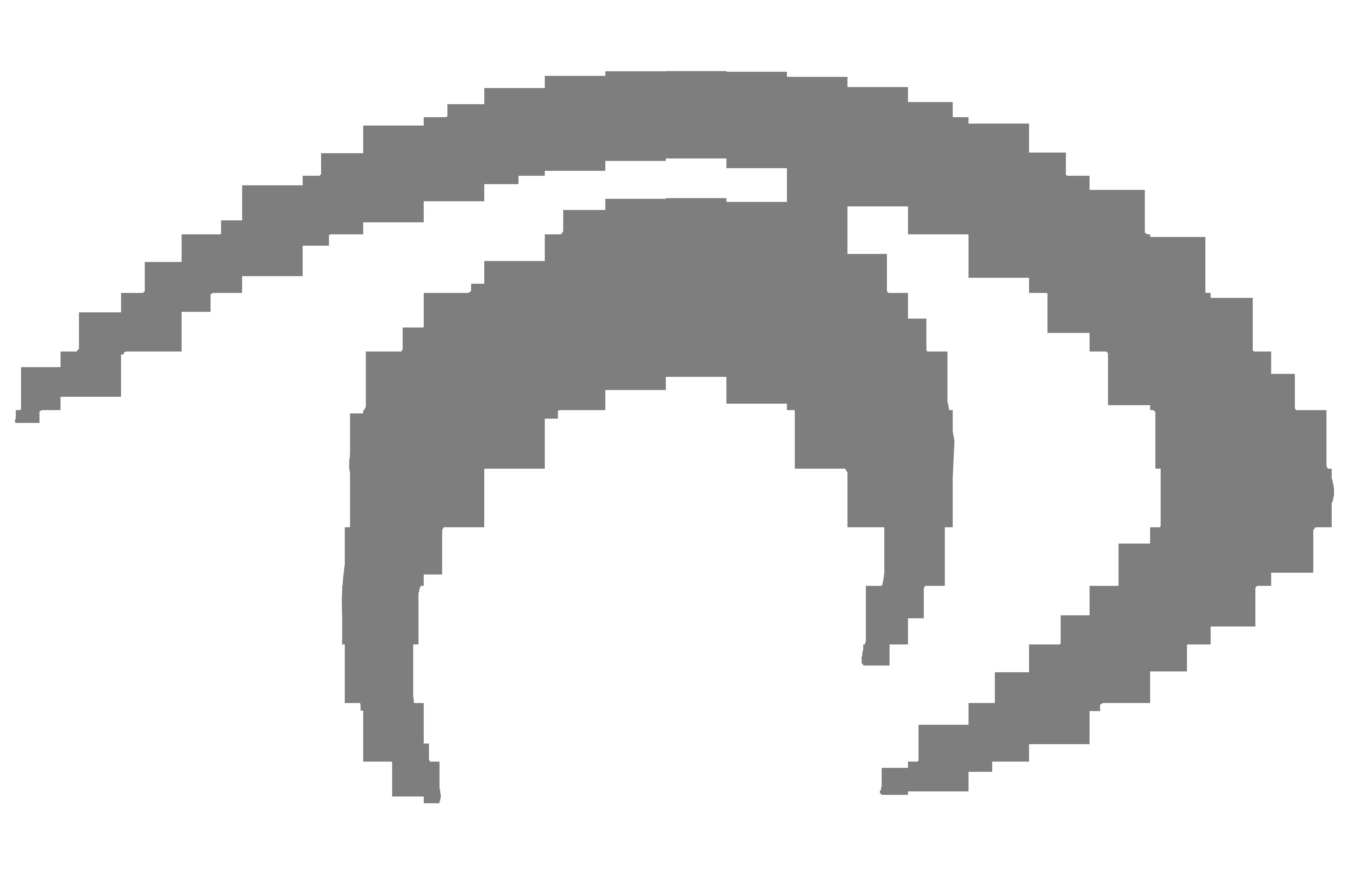 Asociatia Nevazatorilor din Romania Filiala Interjud. Bihor - Salaj logo