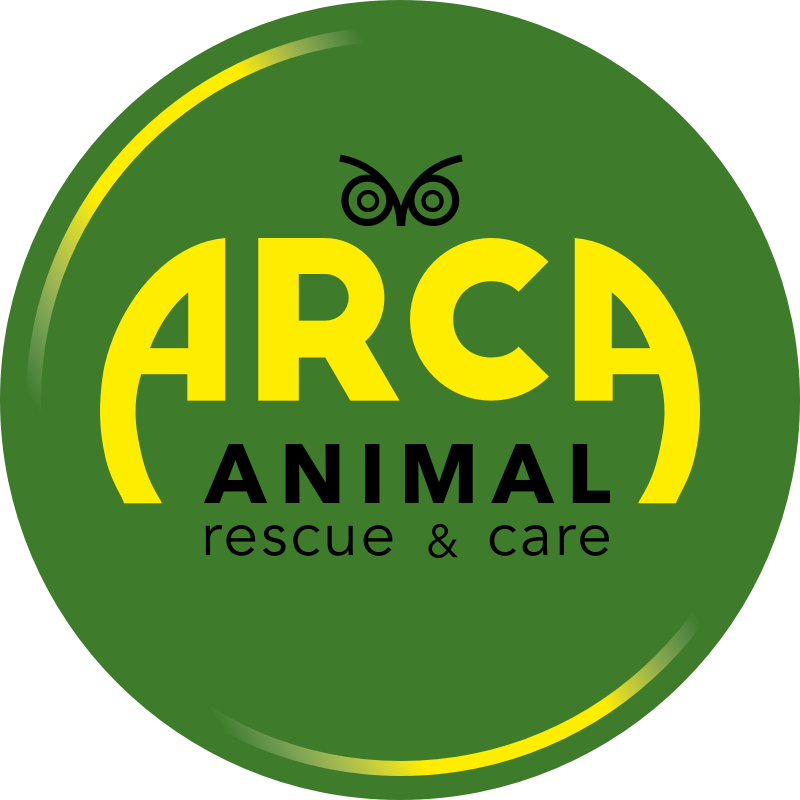 Asociatia ARCA - Animal Rescue and Care logo