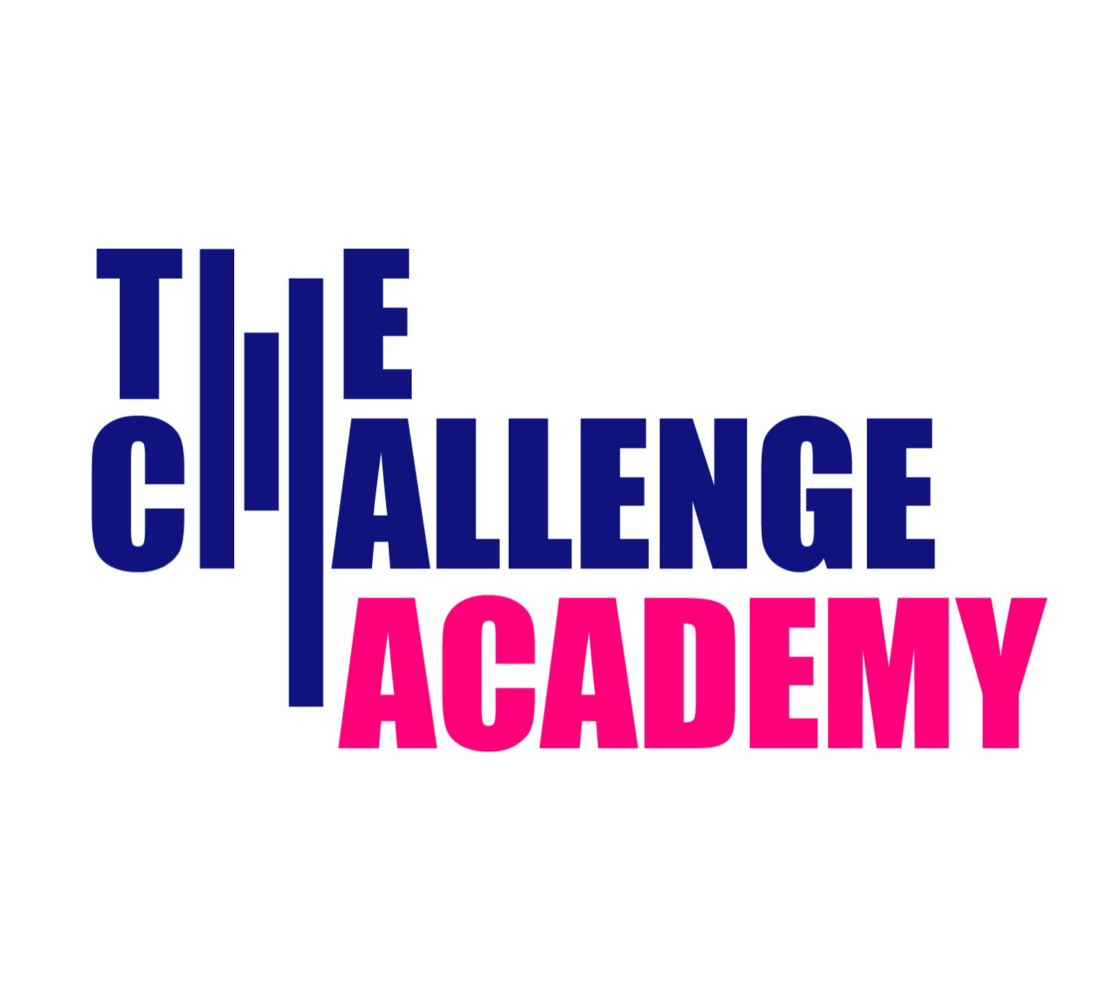 Asociatia The Challenge Academy logo