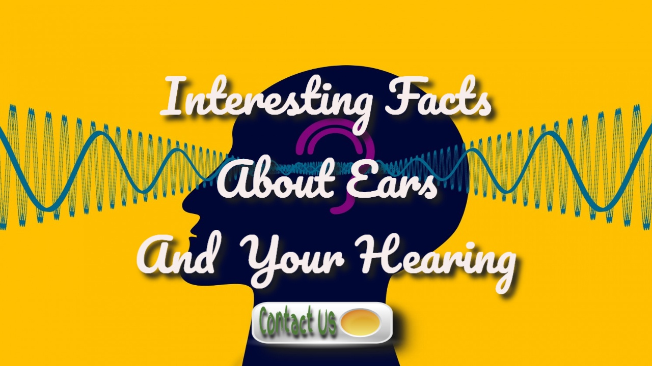 interesting facts about ears