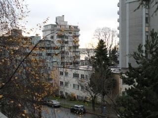 Property Image #64