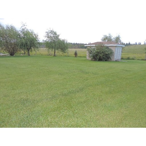 Property Image #38
