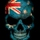 Australian flag skull on black business card r46a7b66c3075404c8f1ee7c41a3b1768 i579u 8byvr 512