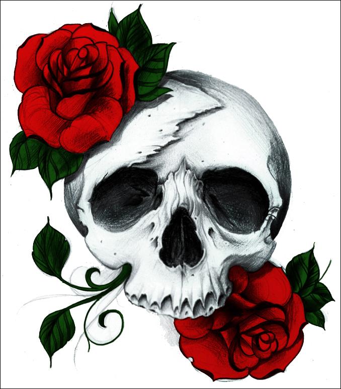 так черепа картинки с розами хорошо