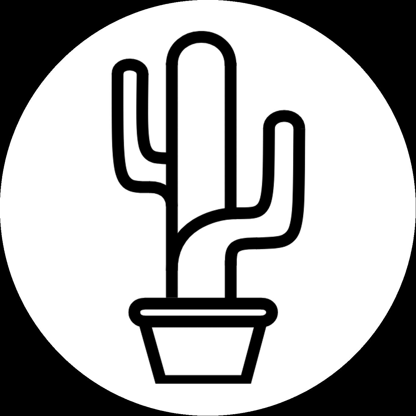 cactus carer