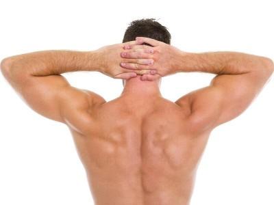 Кола (мъже) гръб/гърди