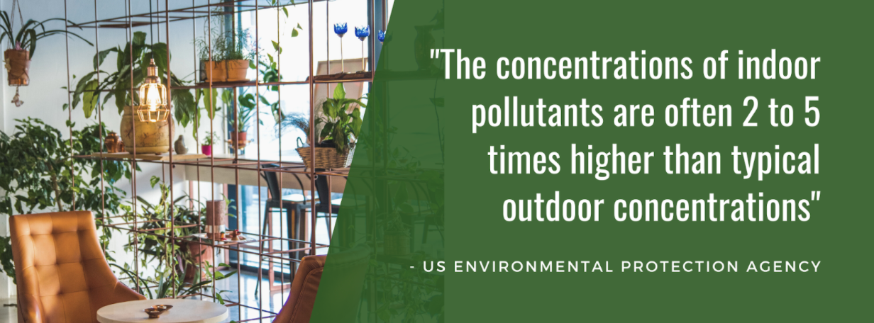 """Interior decorated with plants, text overlay """"The concentration of indoor pollutants are often 2 to 5 times higher than typical outdoor concentrations"""""""