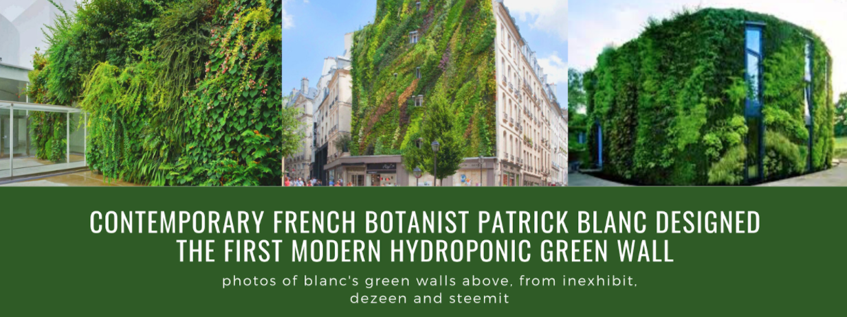 Collage of hydroponic green walls designed by Patrick Blanc