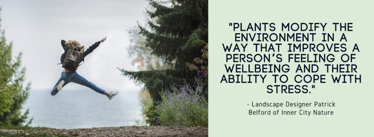 """Person in nature; quote """"plants modify the environment in a way that improves a person's feeling of wellbeing and their ability to cope with stress"""" (Patrick Belford)"""