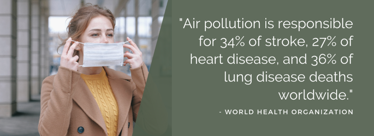 "Statistic from World Health Organization ""Air pollution is responsible for 34% of stroke, 27% of heart disease, and 36% of lung disease deaths worldwide"""