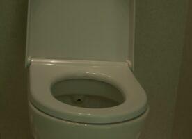 Duravit Toilette