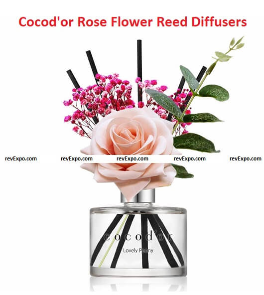 Cocod'or Rose Flower Reed Diffuser