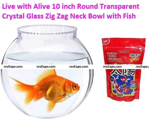 Live with Alive 10 inch Round Transparent Crystal Glass Zig Zag Neck Bowl