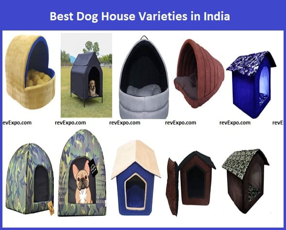 Best Dog House in India|Best Dog Kennel in India
