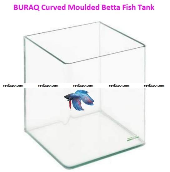 BURAQ Curved Moulded Betta Fish Tank Tempered Crystal Clear Glass Fishes Aquarium