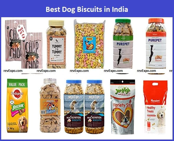 Best Dog Biscuits in India