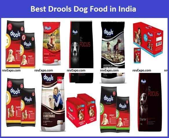 Best Drools Dog Food in India