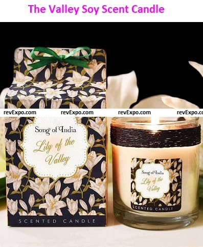 Song of India Lily of The Valley Soy Scent Candle