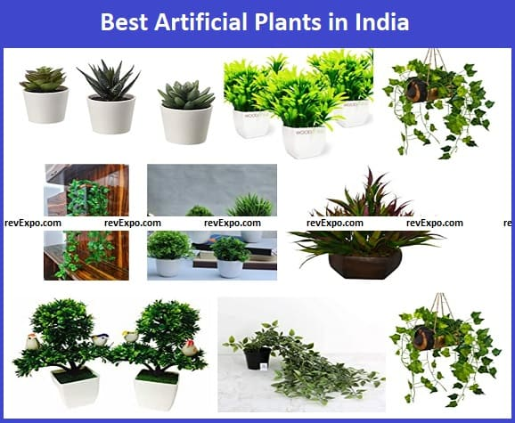 Best Artificial Plants in India