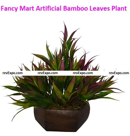 Top Quality Multicolor Bamboo Leaves by Fancy Mart