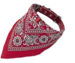 Nobby Dog collar (60 cm)