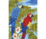 Royal & Langnickel Painting By Numbers Kit - Parrots