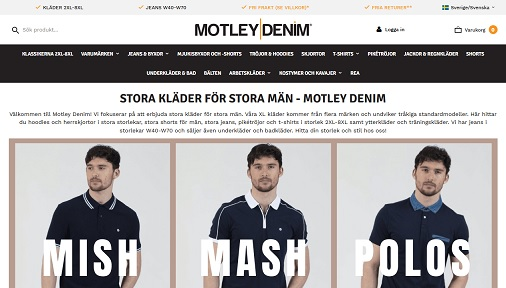 Motley Denim