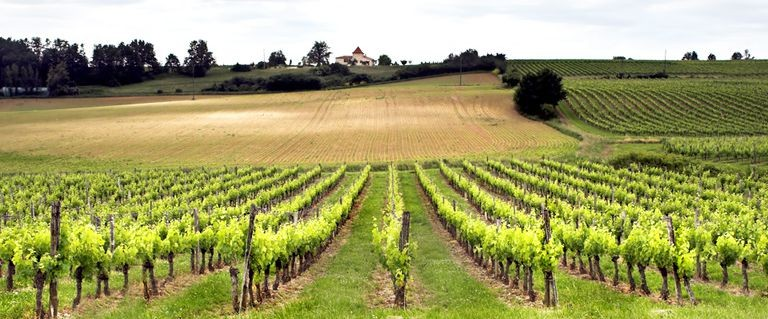 Reiseguide Bordeaux