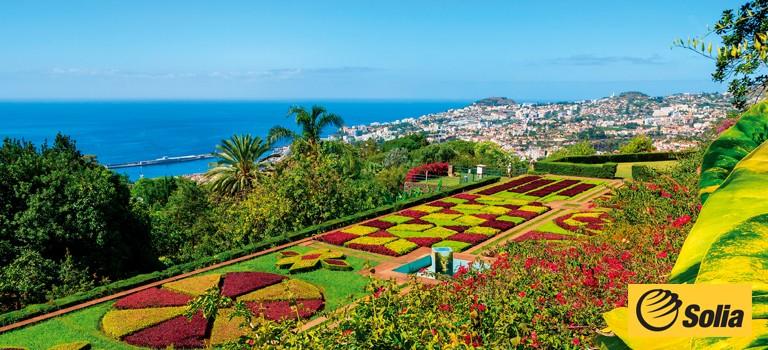 Solia - Madeira og Kanariøyne på sitt beste om høsten og vinteren