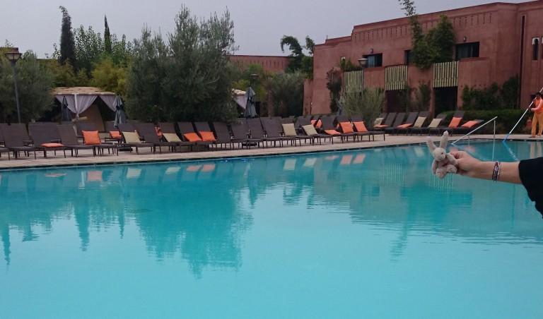 Katrine til Marrakech med Sunny