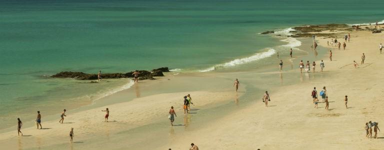 Fuerteventura - semester året om