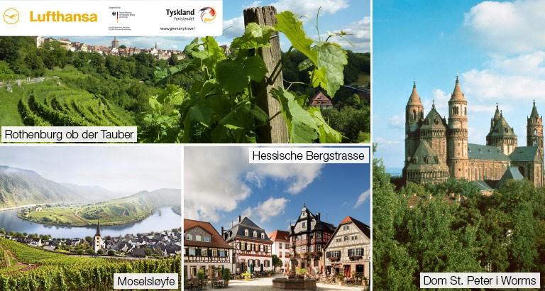 Vinlandet Tyskland