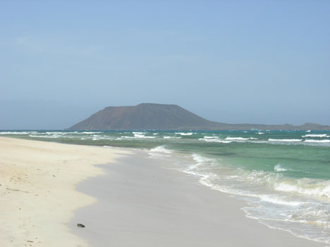 Illustration of Fuerteventura - number 1 of 24