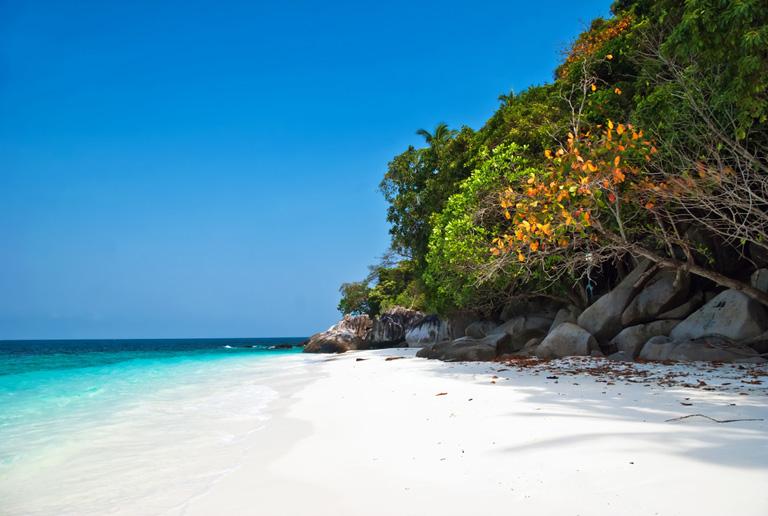Bilder från hotelle Tioman Island - nummer 1 av 4