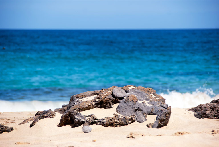 Bilder av Puerto del Carmen - nummer 1 av 8
