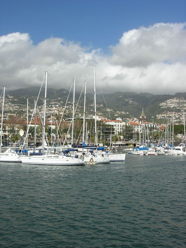 Illustration of Funchal - number 1 of 4