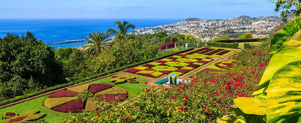 Illustration of Madeira - number 1 of 6