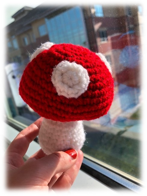 Mini Mushroom Plushie