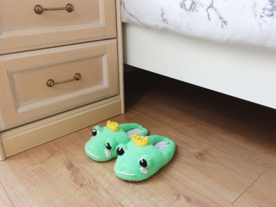 Royal Frog Slippers