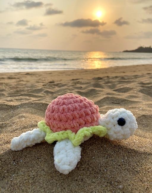 Strawberry Turtle