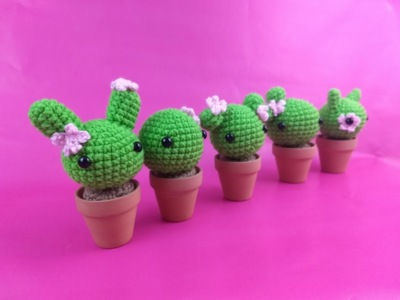 Make your own Cactus