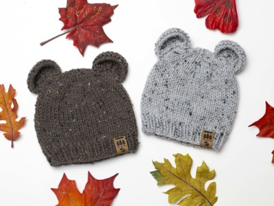 Bear Ears Worsted Weight Hat