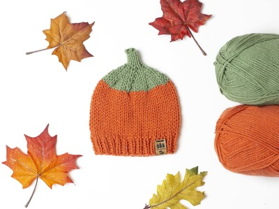 Pumpkin Patch Worsted Weight Hat
