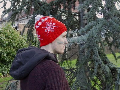 Winter Festivity Hat/Crochet Version