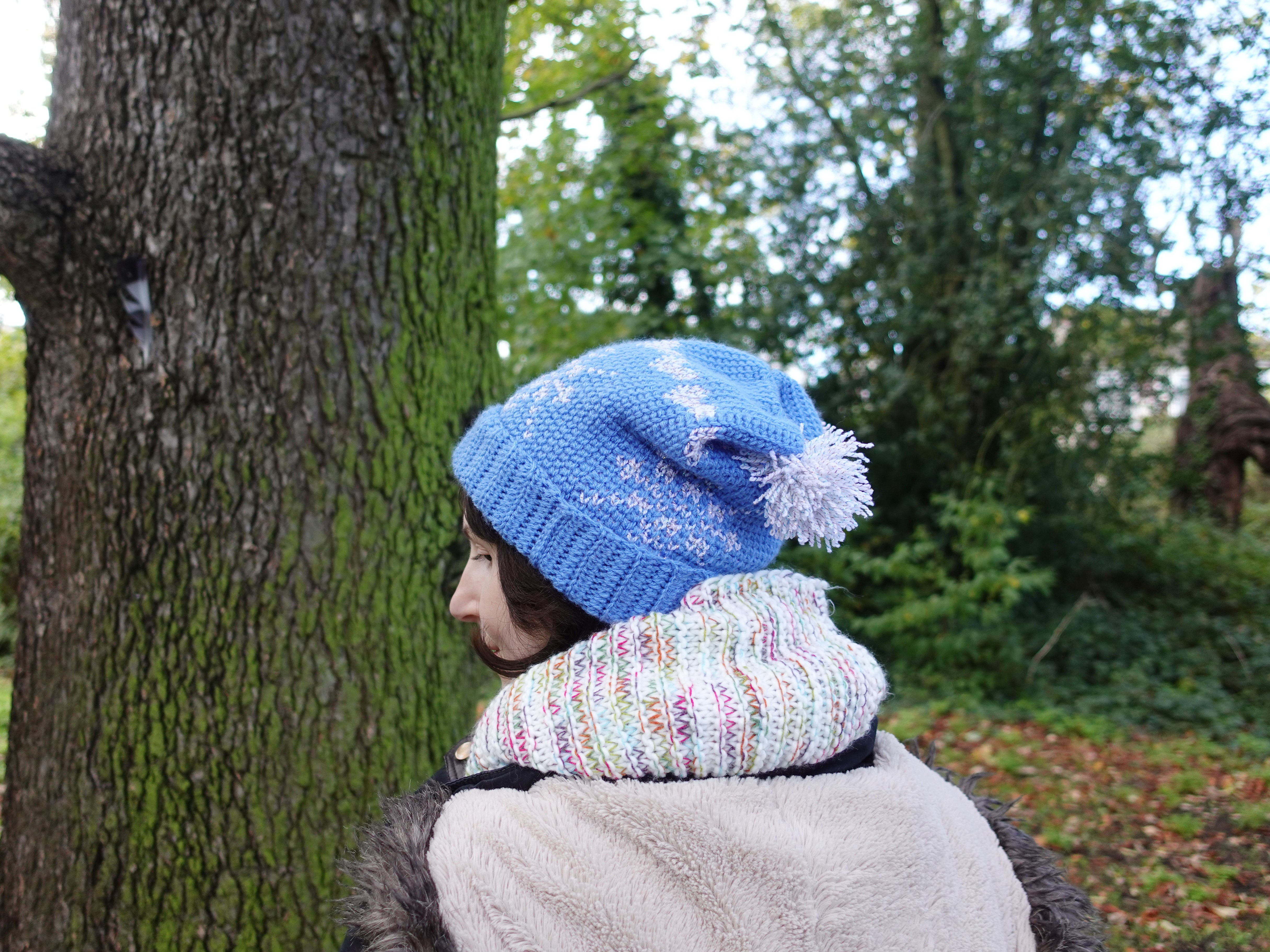 Winter Festivity Hat/Crochet Version